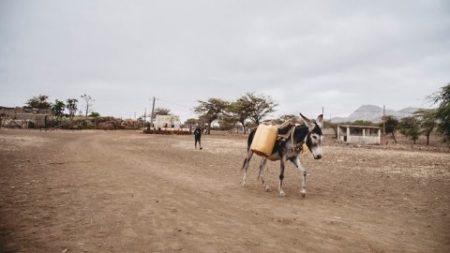 """Cabo Verde: """"A situação atual do país se caracteriza por uma crise hídrica sem precedentes"""""""