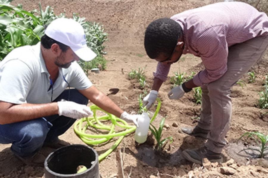 El ITC participa en un proyecto piloto que busca reducir la huella hídrica de la agricultura en Cabo Verde