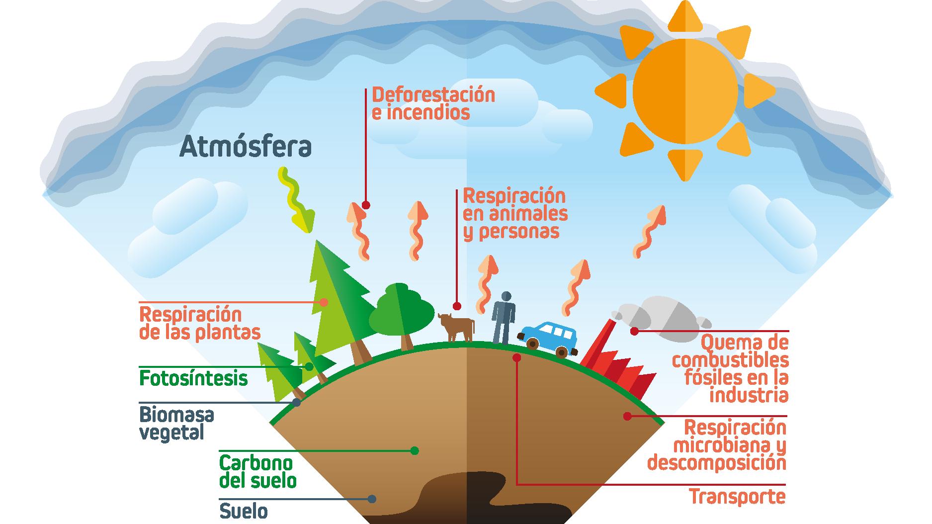 Comienza la 2ª Edición del Curso online de «Introducción al Cambio Climático»