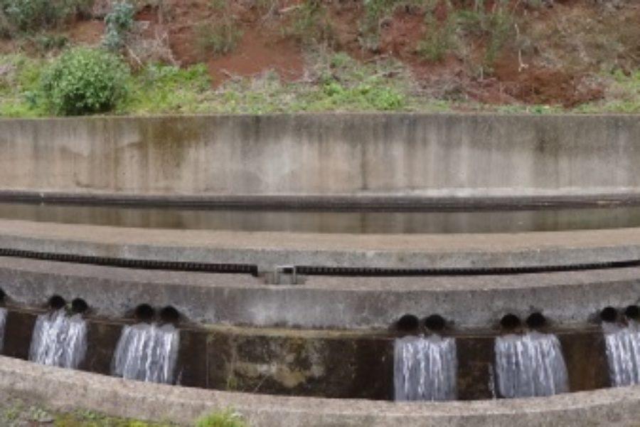"""Seminario  """"Adaptación al Cambio Climático y Uso eficiente del agua en la Macaronesia"""" para celebrar el Día Nacional del Agua de Portugal en Madeira"""